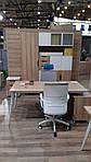 Рабочая станция+USB Delta DL-109 (3580х2400х750мм) Блэквуд Ячменный/Каркас белый/Опора белый беж, фото 2