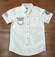 Рубашка-шведка  для мальчика рост 116-122 см, фото 1