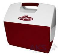 Igloo (США) Изотермический контейнер 15 л Playmate Elite Красный