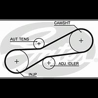 Ремень топливной аппаратуры 81x21 VW/AUDI 100 2,5TDI/SDI 95-- Gates 5494XS