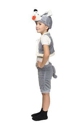 Костюм Волка: жилетка, шапка-маска, шорты с хвостиком., фото 2