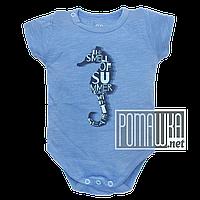 Детский боди футболка 62 2 3 мес летний для мальчика ребёнка новорожденных малышей лето из КУЛИР 4687 Голубой, фото 1