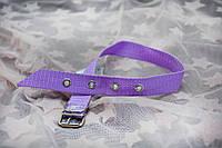Нашийник для собак і кішок з капрону 1,6/24-32 см, фото 1