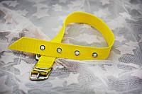 Нашийник для собак і кішок з капрону 2,5/36-45 см, фото 1