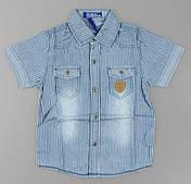 Джинсовая рубашка для мальчиков S&D оптом, 4-12 лет.
