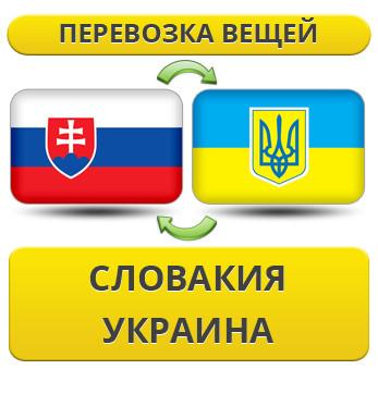 173655303_w640_h640_1.21_slovakiya__usluga_rus.jpg