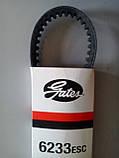 Gates ремень ГРМ, фото 3