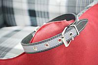 Ошейник для собак кожаный со светоотражательной лентой, фото 1