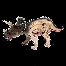 Об'ємна анатомічна модель Динозавр Трицератопс