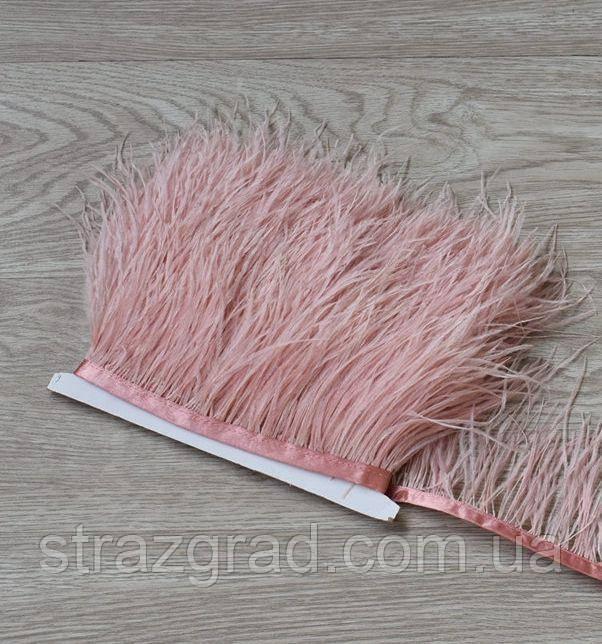 Пір'яна тасьма страусина Колір Пудрово Рожевий Перо 9-15см Ціна за 0,5 м