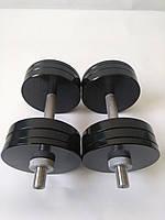 Гантели металлические 2 шт по 20 кг