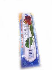 Термометр кімнатний CH-3010