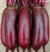 Семена свеклы Карилон (Carillon RZ), цилиндрический PR, 100 тыс.семян, фото 1