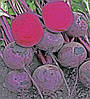 Семена свеклы Зеппо (Zeppo RZ) F1, 100 тыс.семян