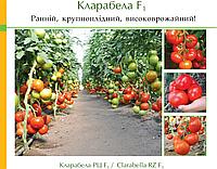 Семена томата Кларабелла (Clarabella RZ) F1
