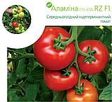 Семена томата Аламина 73-672 (Alamina RZ) F1, 1000 семян, фото 2