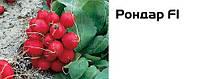 Семена редиса Рондар F1, 10 тыс.семян, фото 1