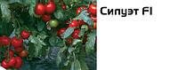 Семена томата Силуэт F1, 500 семян, фото 1
