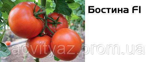 Семена томата Бостина F1, 500 семян