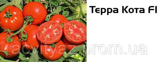 Семена томата Терра Котта F1, 1000 семян