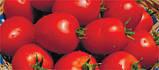 Семена томата Намиб F1, 1000 семян, фото 2