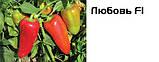 Насіння перцю Любов F1, 500 насінин, фото 4