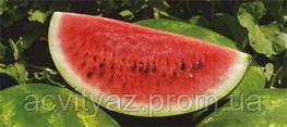 Семена арбуза ВДЛ5003 (Арашан) F1, 1000 семян