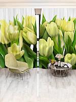 Фотошторы WallDeco Жёлтые тюльпаны (31255_1_6)