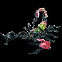 Объемная анатомическая модель Скорпион