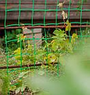Сетка огуречная шпалерная, Украина, 1,7 м х 500 м, фото 4