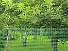 Садовая сетка 2 м х 100 м (ячейка 30мм*35мм), фото 4