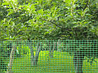 Садовая сетка 1,5 м х 100 м (ячейка 30мм*35мм), фото 5