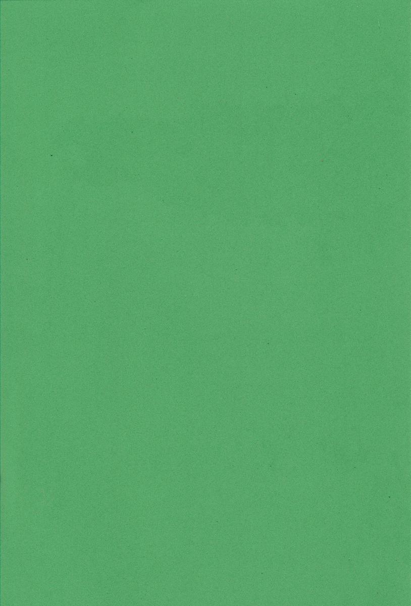 Фоамиран А4 Зелёный 1 мм., 7747