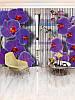Фотошторы орхидея (29361_4_8)