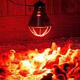 Инфракрасная лампа PAR38 175Вт 230В белая, фото 2