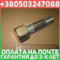 ⭐⭐⭐⭐⭐ Шпилька опоры задней Т 150 (в сборе с гайкой) производство  Украина  151.30.218