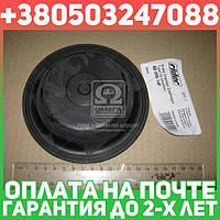 ⭐⭐⭐⭐⭐ Мембрана камеры торм. тип-14 (мелкая) МAН  (RIDER)  RD 095-14F