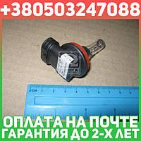 ⭐⭐⭐⭐⭐ Лампа накаливания H16 12V 19W PGJ19-3 STANDARD 3200K (пр-во Philips)