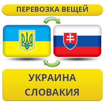 173869968_w640_h640_1.21_ukraina_s__usluga_rus.jpg