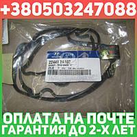 ⭐⭐⭐⭐⭐ Прокладка клапанной крышки (производство  Mobis)  224412A102