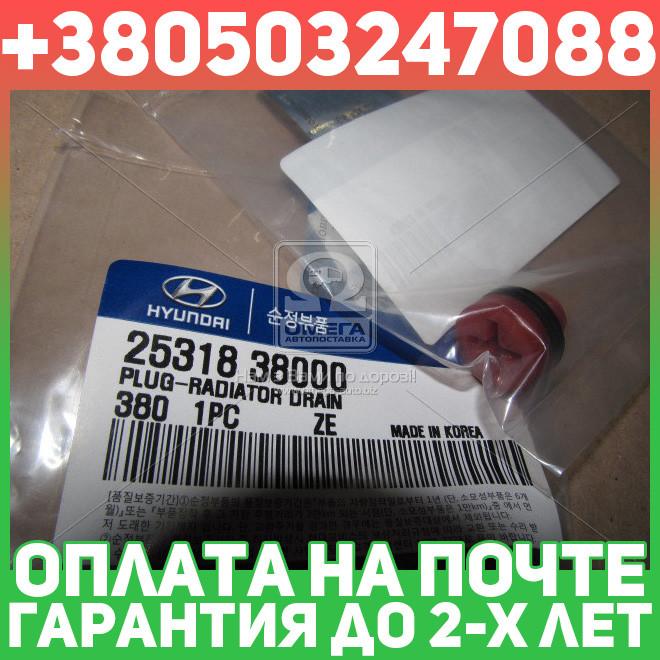 ⭐⭐⭐⭐⭐ Пробка сливная радиатора (производство  Mobis)  2531838000