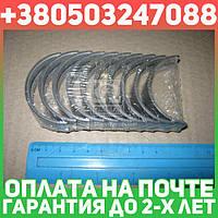 ⭐⭐⭐⭐⭐ Вкладыши коренные (производство  NDC)  MS-1168A.050