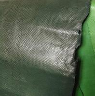 Карунг зелено-серый