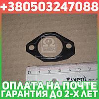 ⭐⭐⭐⭐⭐ Защитная пластина (производство  Bosch)  1 461 074 338