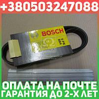 ⭐⭐⭐⭐⭐ Ремень п-клиновой 5pk884 (пр-во Bosch)