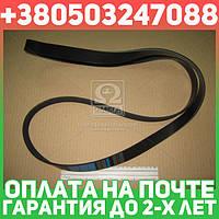 ⭐⭐⭐⭐⭐ Ремень поликлиновый 7PK1920 (производство  DONGIL)  7PK1920