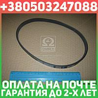 ⭐⭐⭐⭐⭐ Ремень поликлиновый 4PK635 (производство  DONGIL)  4PK635