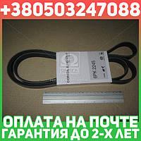 ⭐⭐⭐⭐⭐ Ремень поликлиновый 6PK2245 (производство  DONGIL)  6PK2245