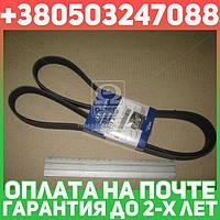 ⭐⭐⭐⭐⭐ Ремень поликлиновой (производство  Mobis)  2521227020