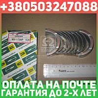 ⭐⭐⭐⭐⭐ Вкладыши коренные (производство  NDC)  MS-1173GP.025
